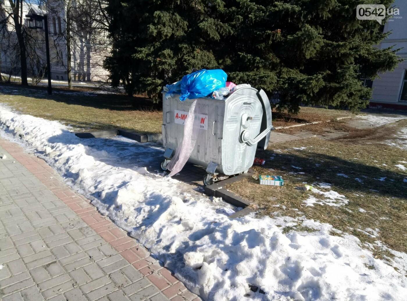 Театральную площадь в Сумах «украсили» мусорными баками, фото-4