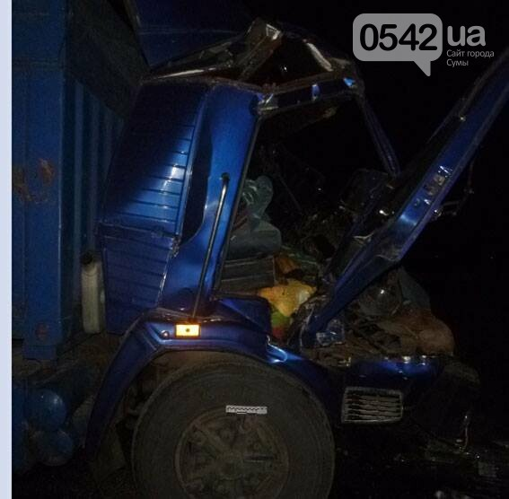 На Сумщине столкнулись два грузовика. Есть пострадавшие , фото-4