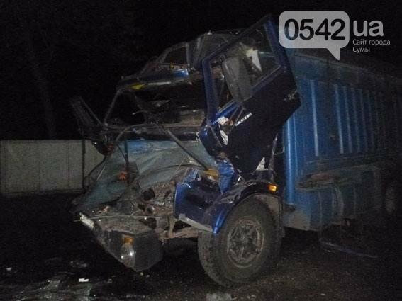 На Сумщине столкнулись два грузовика. Есть пострадавшие , фото-5