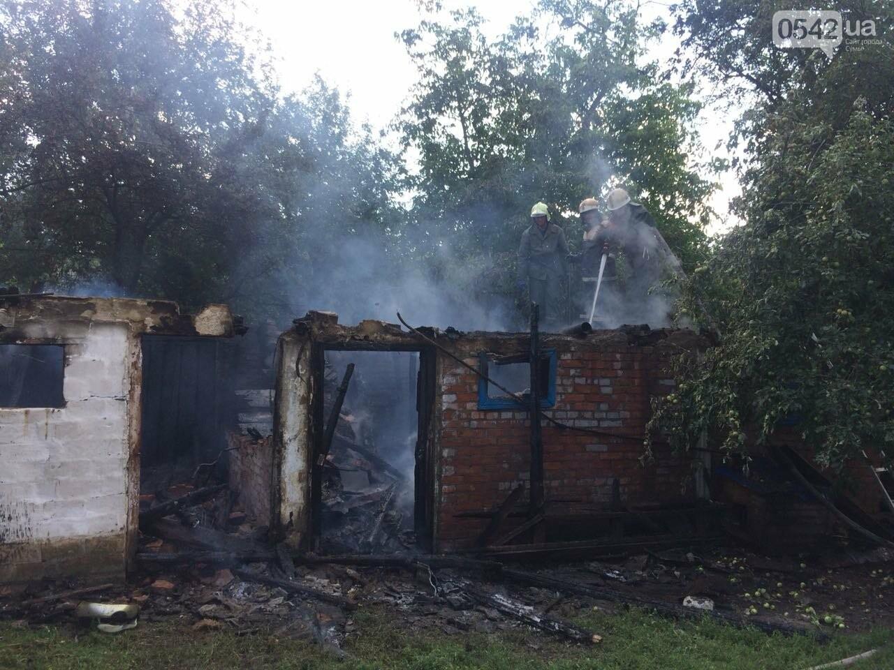 На Сумщине детские шалости с огнем привели к пожару, фото-2
