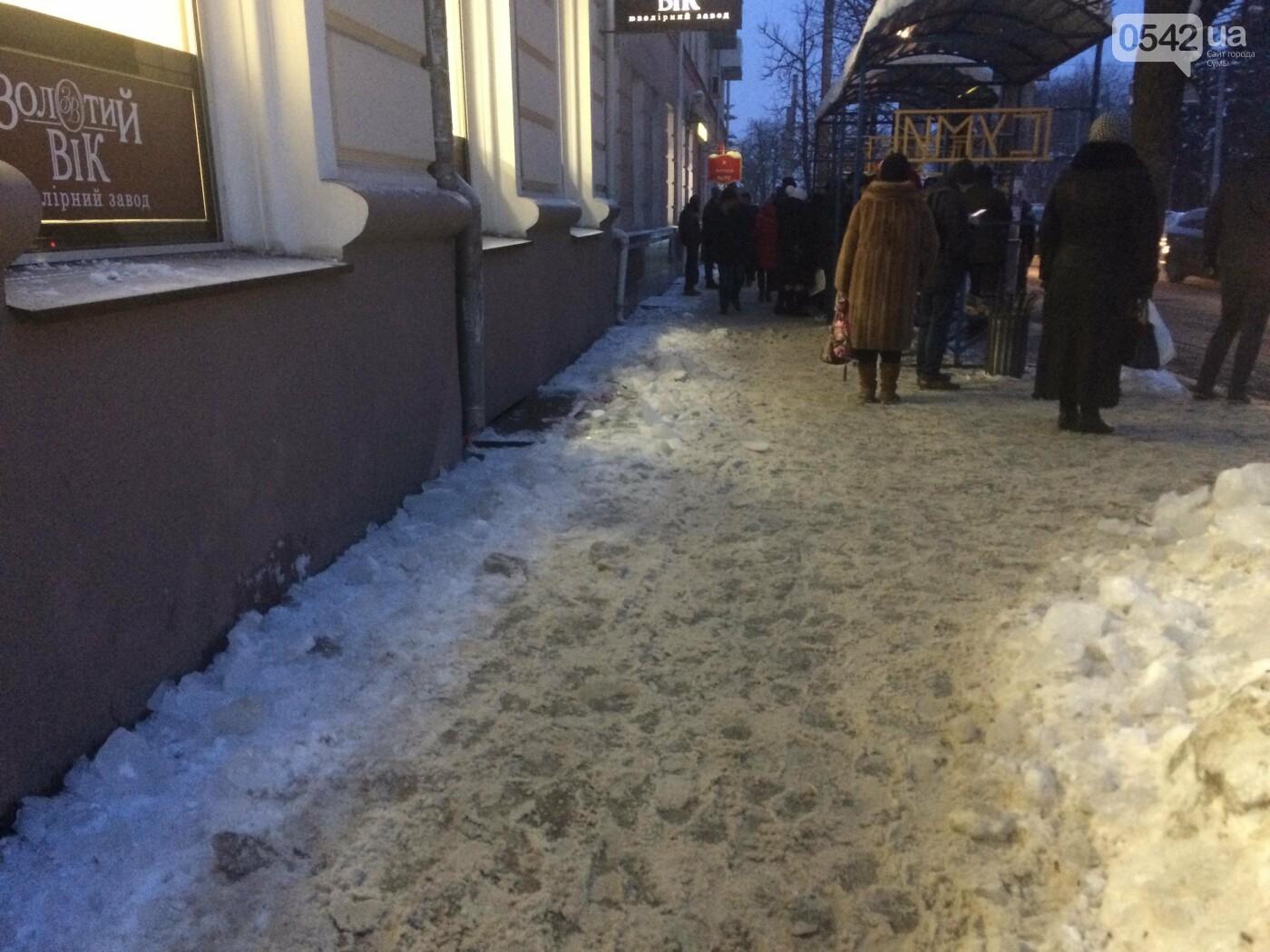 Мэр Сум призвал инспекцию по благоустройству штрафовать предпринимателей за снег, лед и сосульки, фото-2