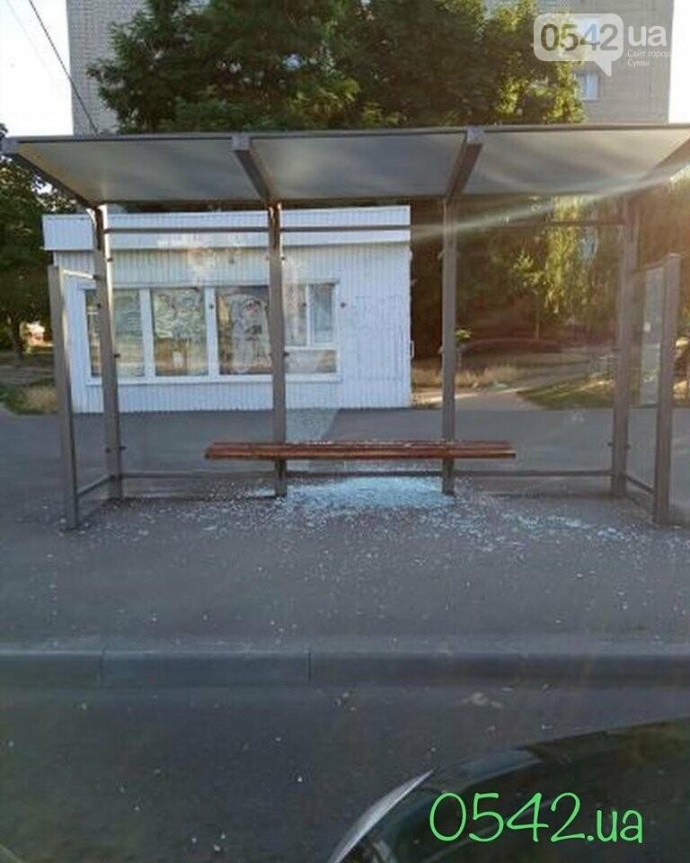 У Сумах вандали розтрощили зупинку, фото-2