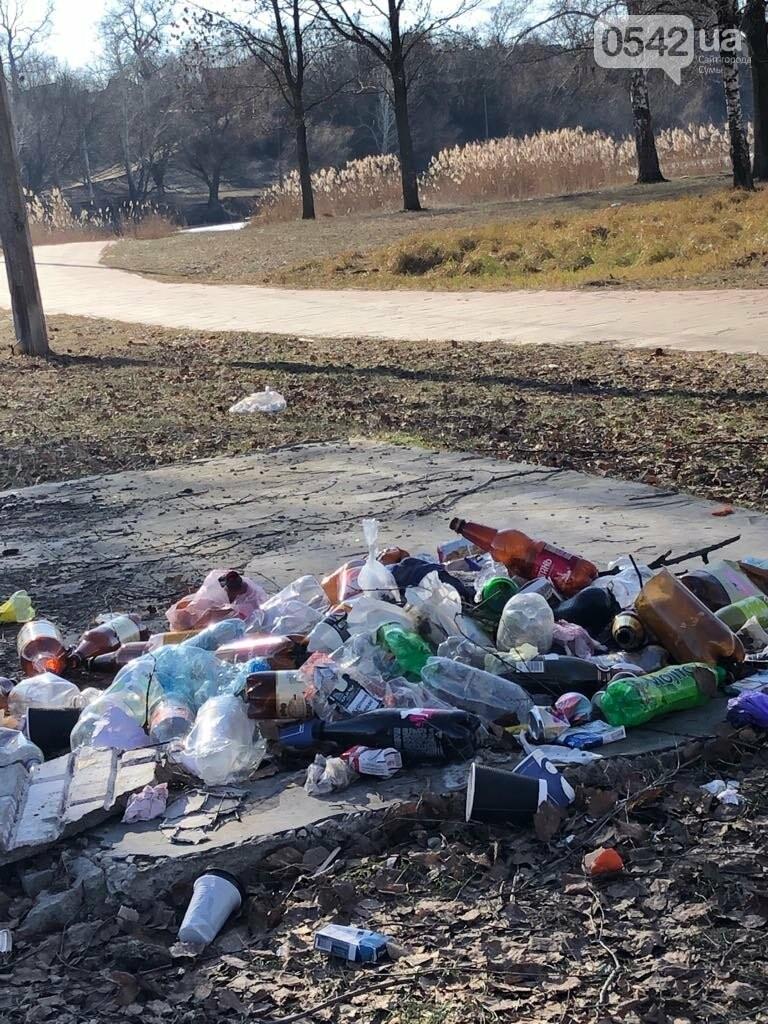 У Сумах на території озера Чеха купи сміття: відповідальних немає, фото-2