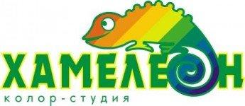 Логотип - Хамелеон -  лакокрасочные материалы бюджетного и элитного уровня