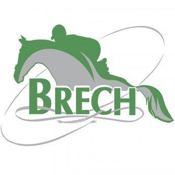 Логотип - Бреч, туристическо-гостиничный комплекс