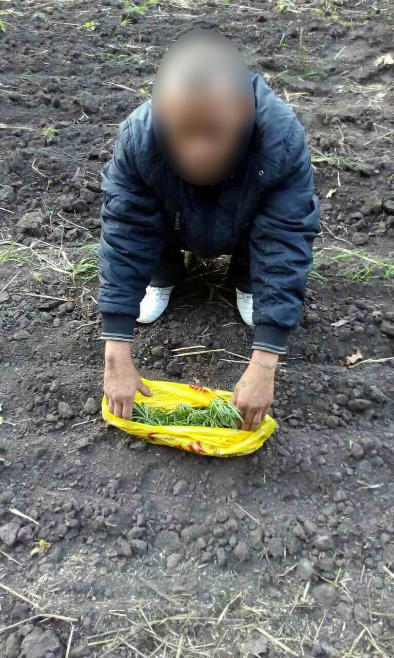 Пограничники Сумщины задержали украинца с наркотиками, фото-1