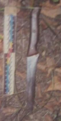 Житель Сумщины зарезал свою знакомую и хотел сжечь тело, фото-2