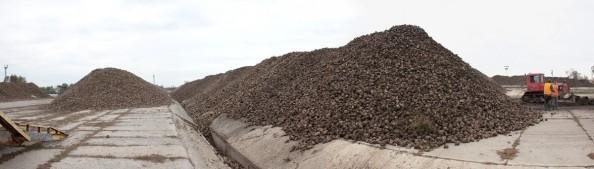 На Сумщині запрацював цукровий завод, фото-2