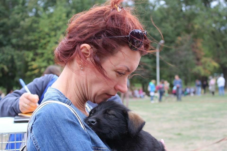В Сумах на фестивале «Друг из приюта» 13 животных нашли дом, фото-1