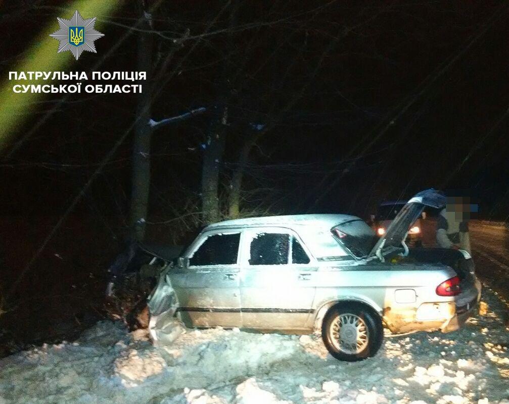 Под Сумами пьяный водитель врезался в дерево, фото-1