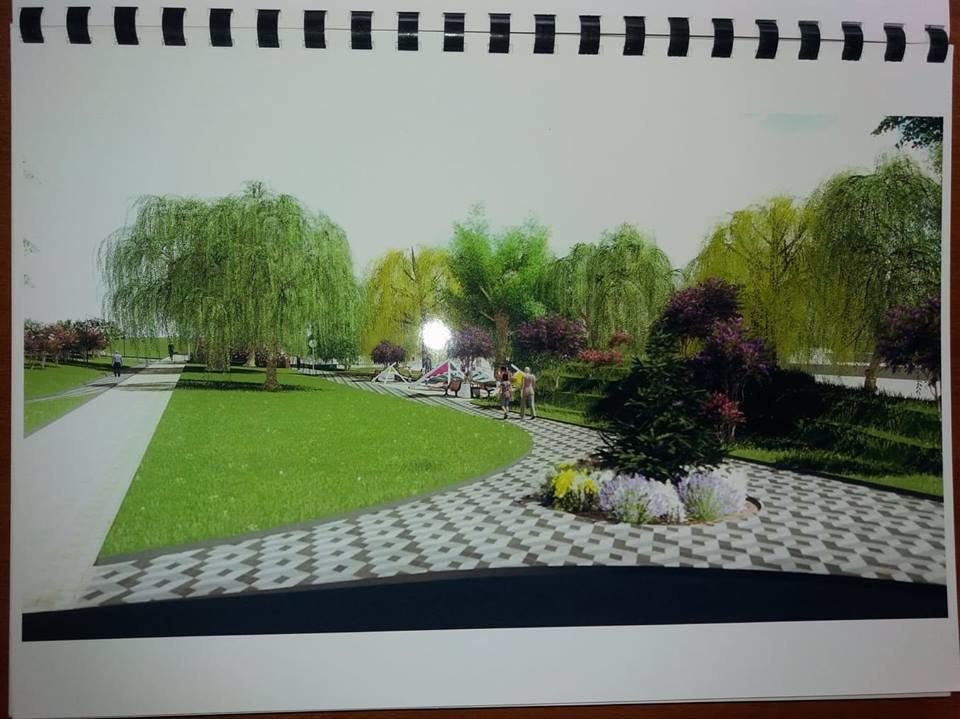 В Сумах работают над созданием «Сиреневого бульвара», фото-6