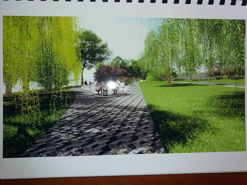 В Сумах работают над созданием «Сиреневого бульвара», фото-4
