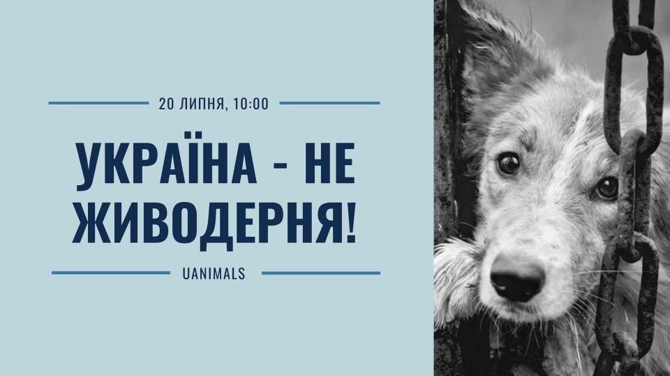 Сумчан зовут на Всеукраинскую акцию «Украина – не живодерня», фото-1