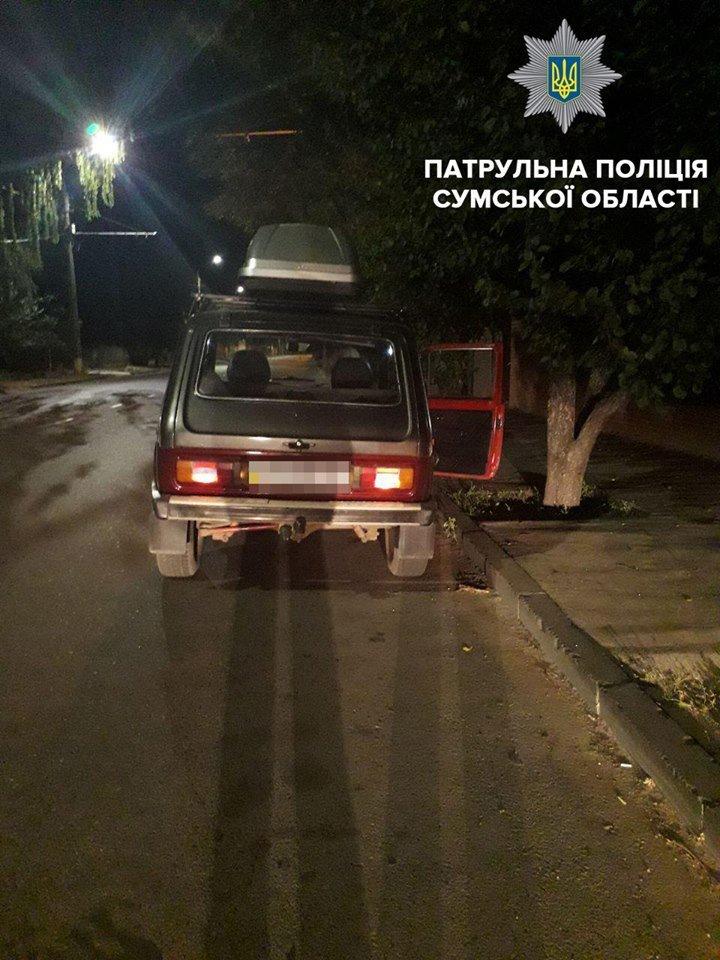 Убийцы на дороге: в Сумах на выходных выявили 12 пьяных водителей, фото-2