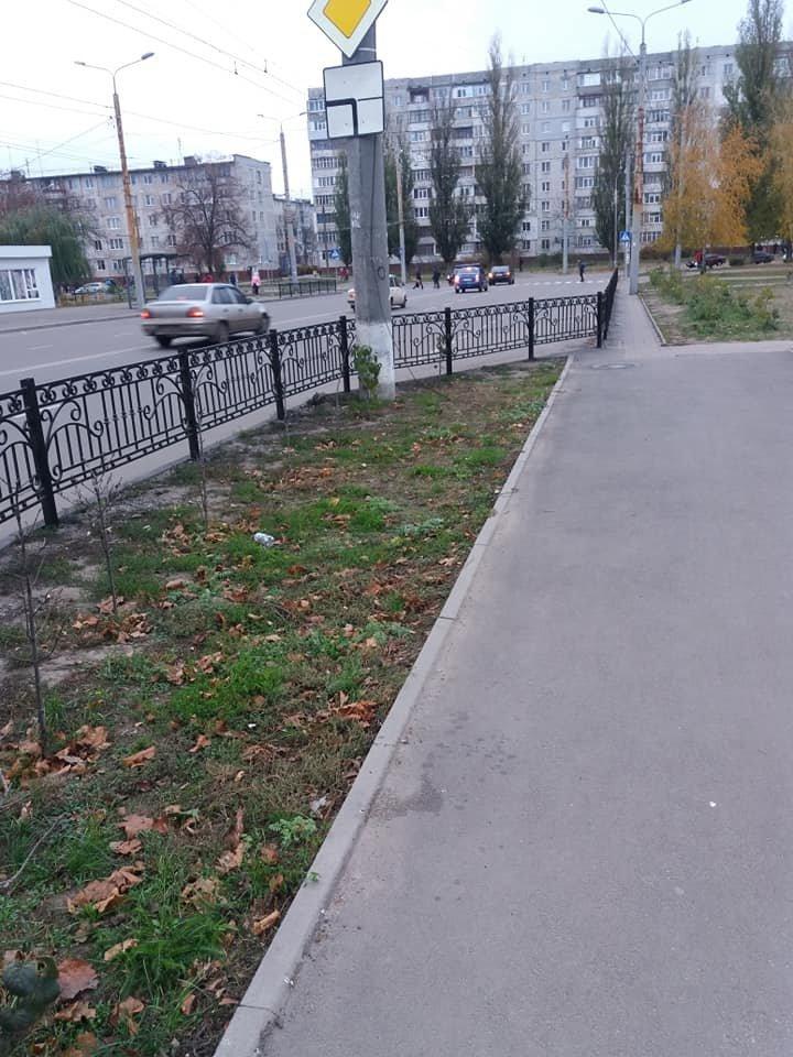 В Сумах на ул. Зеленко установили пешеходное ограждение, фото-1