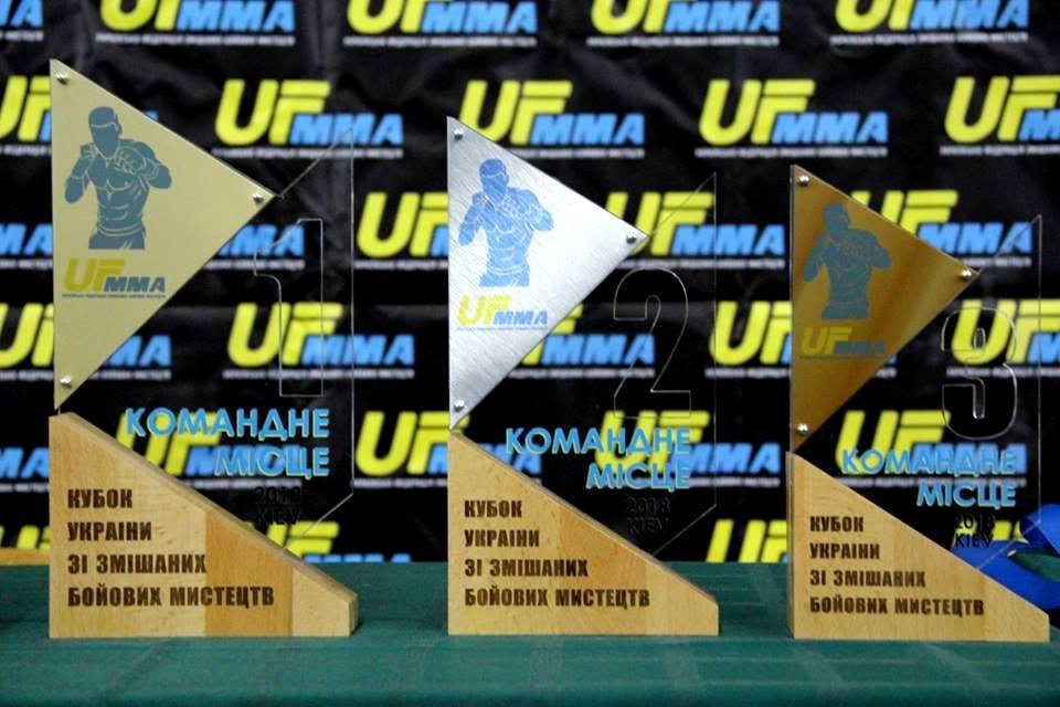 Бойцы Сумщины вернулись с Кубка Украины по ММА с наградами, фото-2