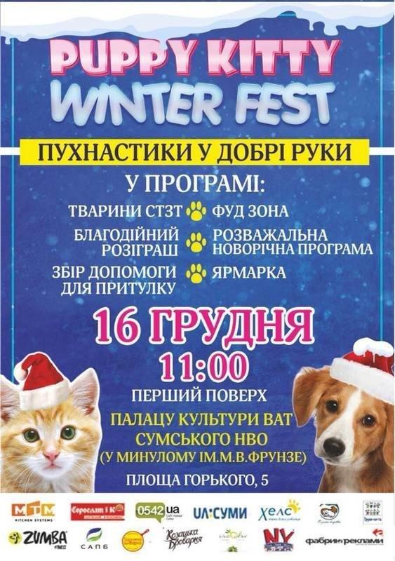На выходных в Сумах пройдет зимний фестиваль животных, которые ищут дом, фото-1