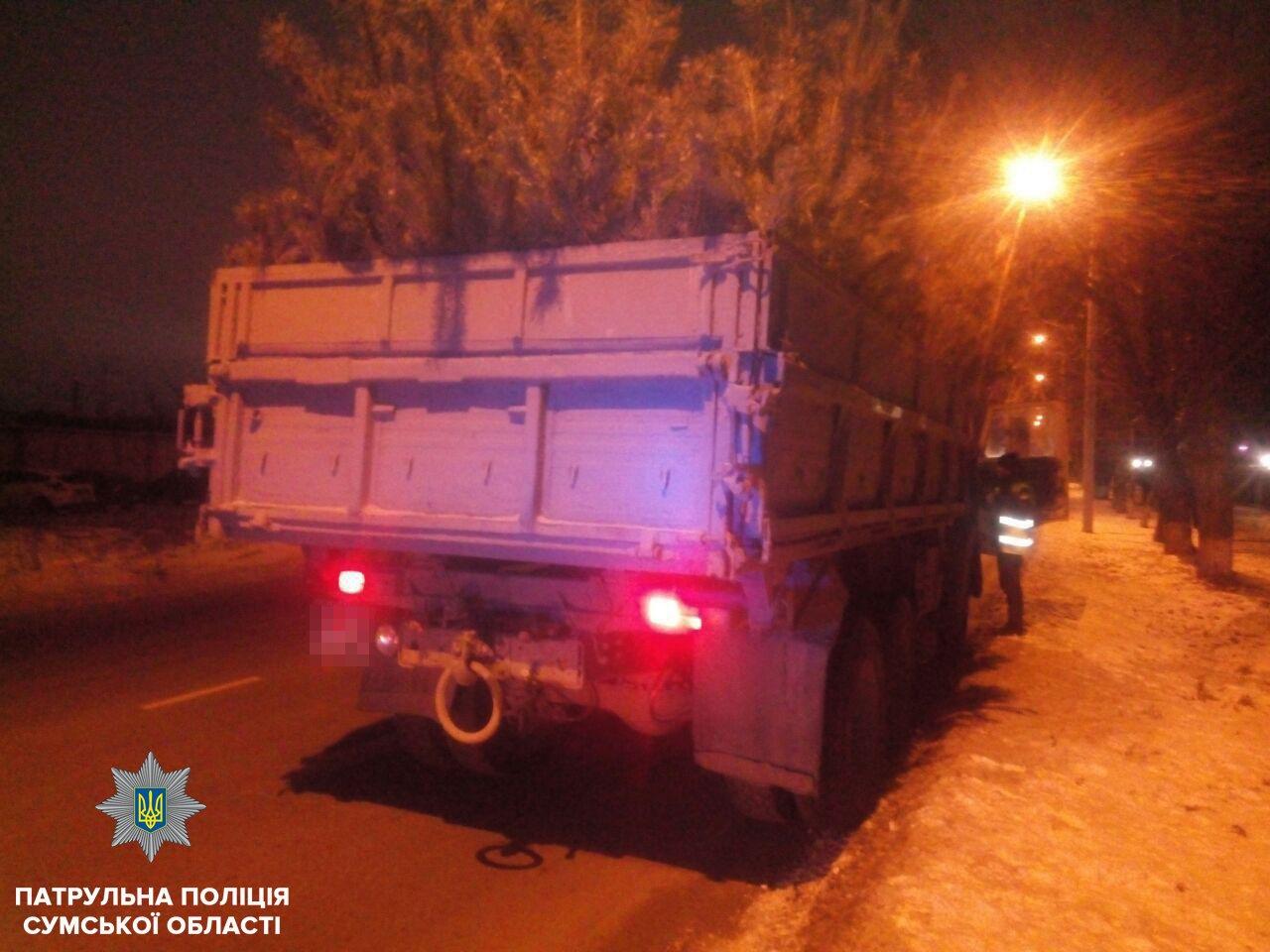 За неделю в Сумах выявили три автомобиля с незаконными новогодними деревьями, фото-1