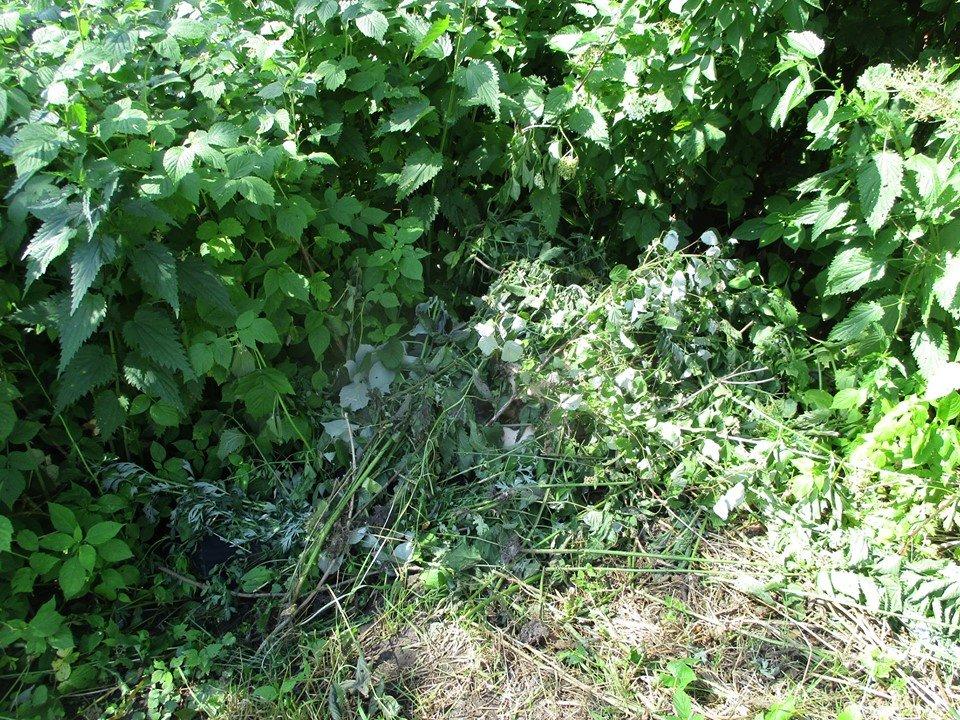 На Сумщині двоє молодиків на смерть забили пенсіонера , фото-1