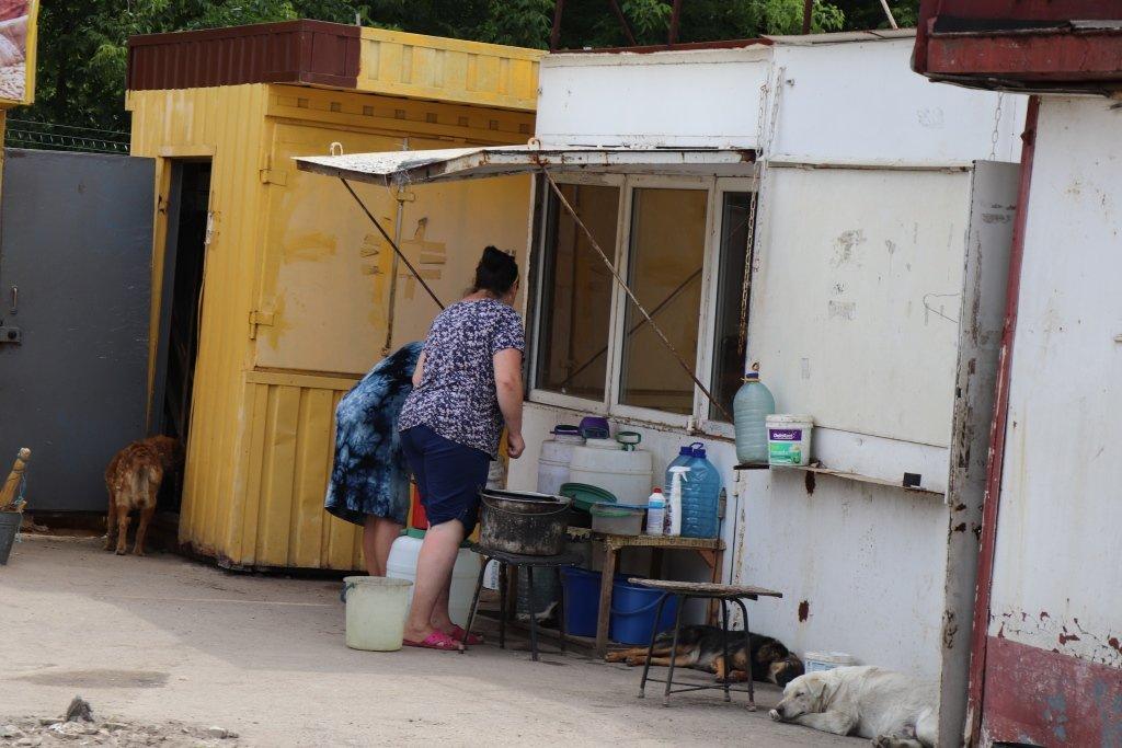 У Сумах завершують облаштування комунального Центру перетримки безпритульних тварин, фото-4