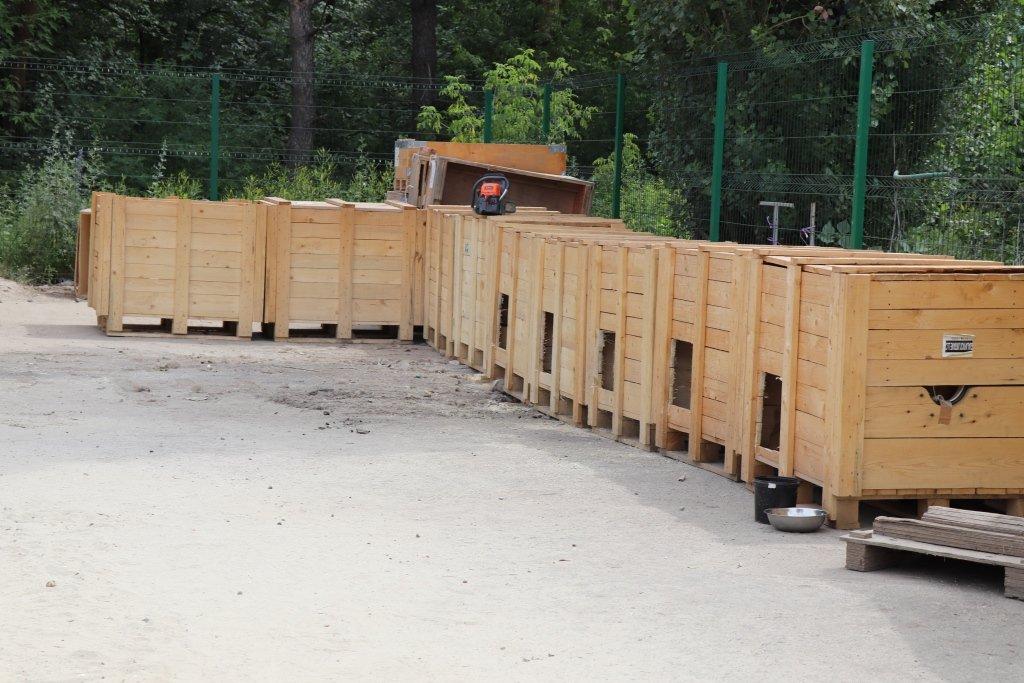 У Сумах завершують облаштування комунального Центру перетримки безпритульних тварин, фото-5