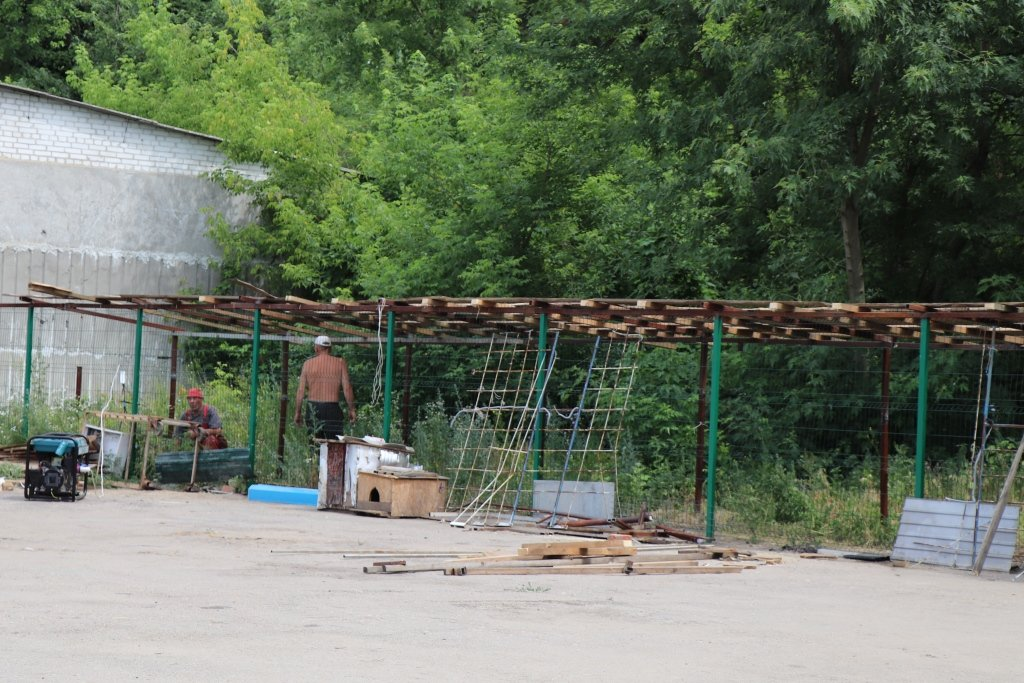У Сумах завершують облаштування комунального Центру перетримки безпритульних тварин, фото-6