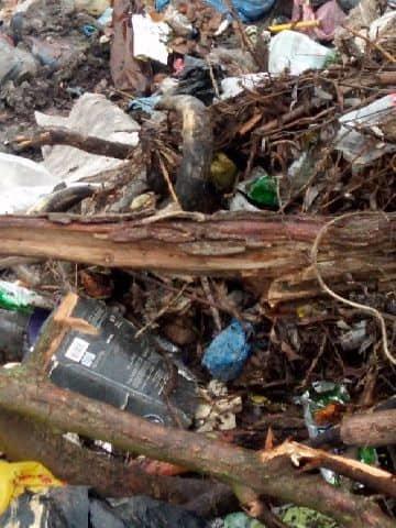 На Сумщині виявлено стихійне сміттєзвалище з рештками свійських тварин, фото-1