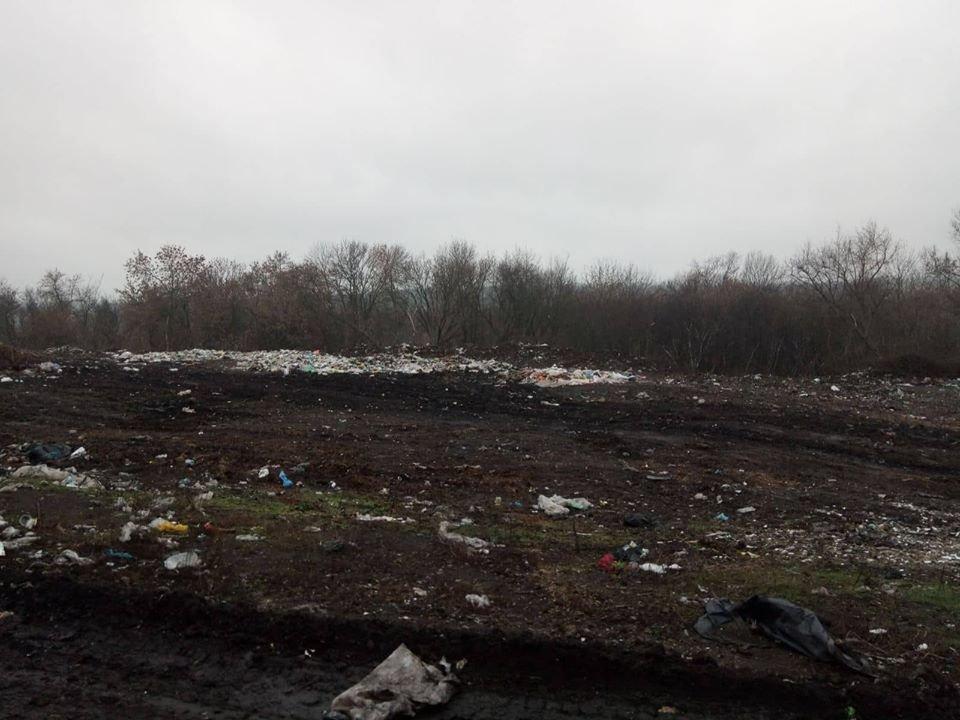 На Сумщині виявлено стихійне сміттєзвалище з рештками свійських тварин, фото-2