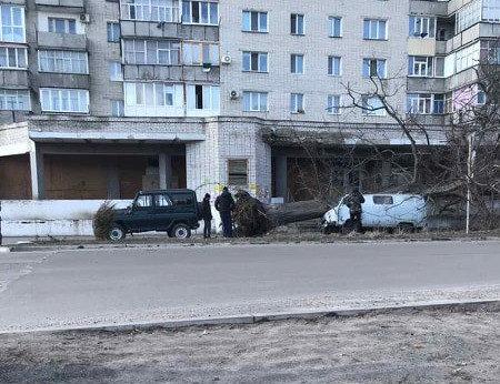 На Сумщині дерево розтрощило автомобіль, фото-4