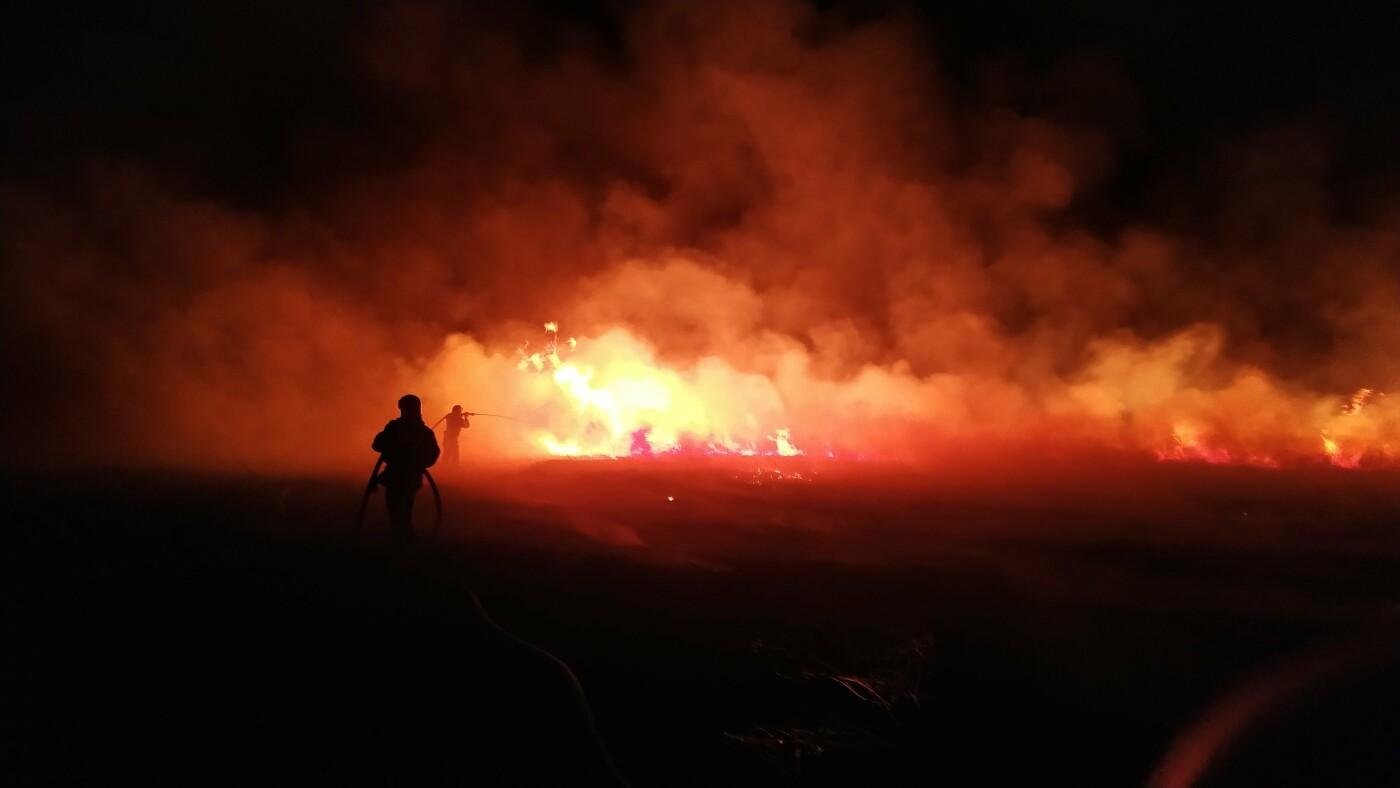 Масштабна пожежа: на Сумщині вигоріло 5 гектарів , фото-1