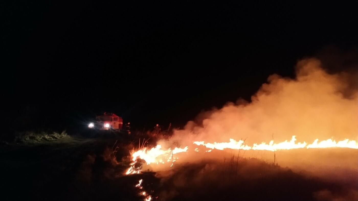 Масштабна пожежа: на Сумщині вигоріло 5 гектарів , фото-2