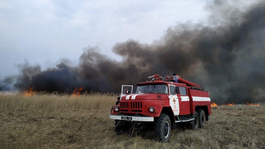 На Сумщині вогнеборці, ліквідовуючи загоряння 2 га рослинності, врятували ліс , фото-2
