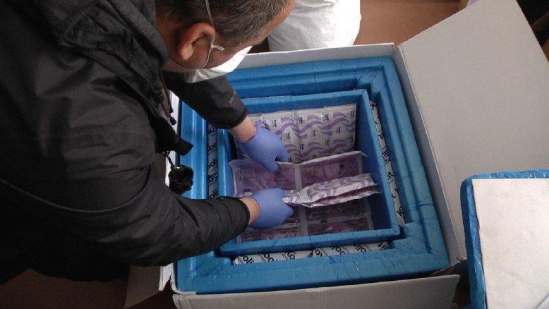 Благодійники Сум передали дитячій лікарні Св.Зінаїди 25 упаковок медичного препарату «Актемра», фото-1