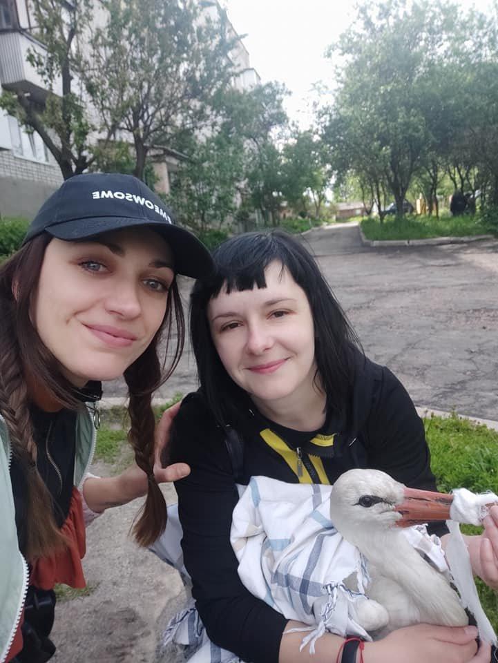 Лелека на ім'я Сеня з Глухова житиме зі страусами на фермі, фото-4