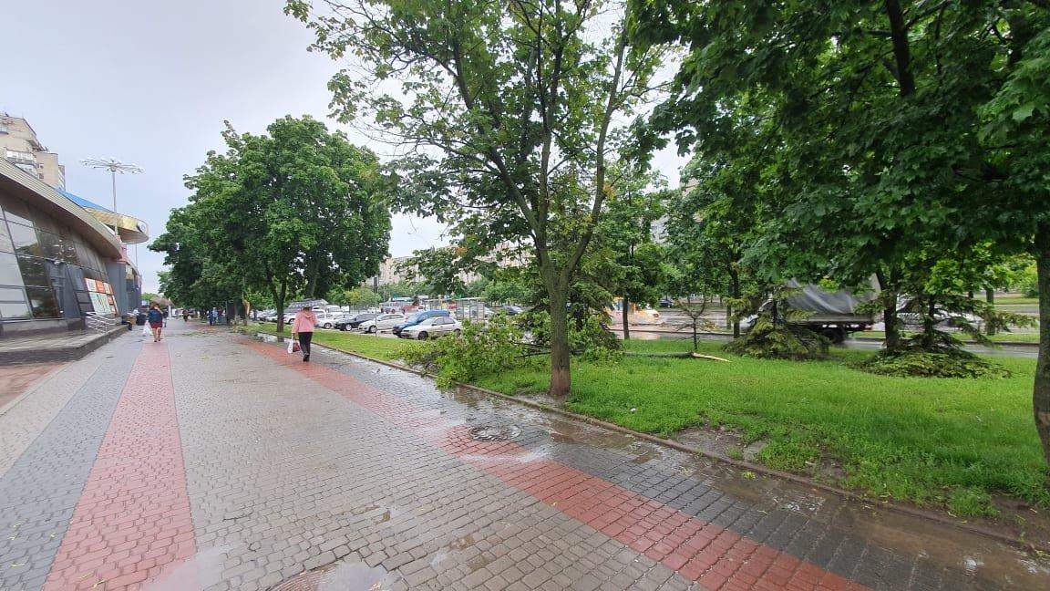 Буревій у Сумах: зламані дерева, паркани та пошкоджені автівки , фото-1