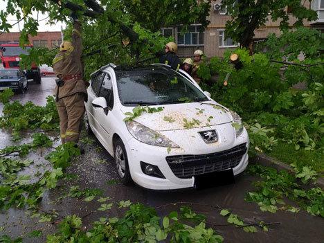 Буревій у Сумах: зламані дерева, паркани та пошкоджені автівки , фото-6