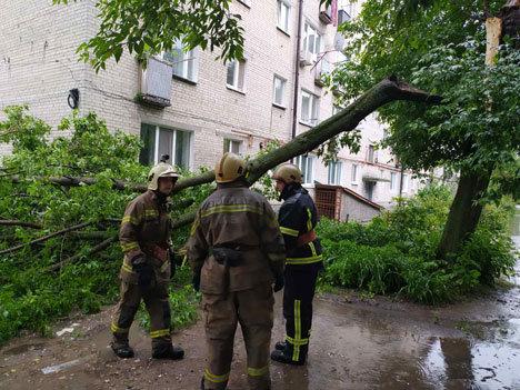 Буревій у Сумах: зламані дерева, паркани та пошкоджені автівки , фото-5