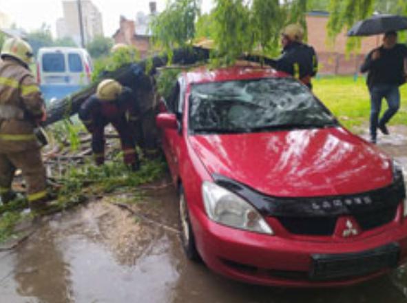 Буревій у Сумах: зламані дерева, паркани та пошкоджені автівки , фото-4
