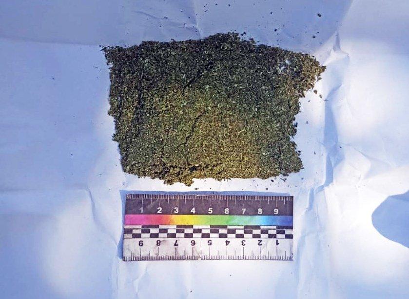 За вирощування коноплі житель Сумщини відповідатиме перед судом, фото-2