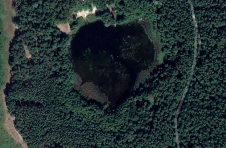 Під Сумами знайшли озеро у формі серця, фото-1