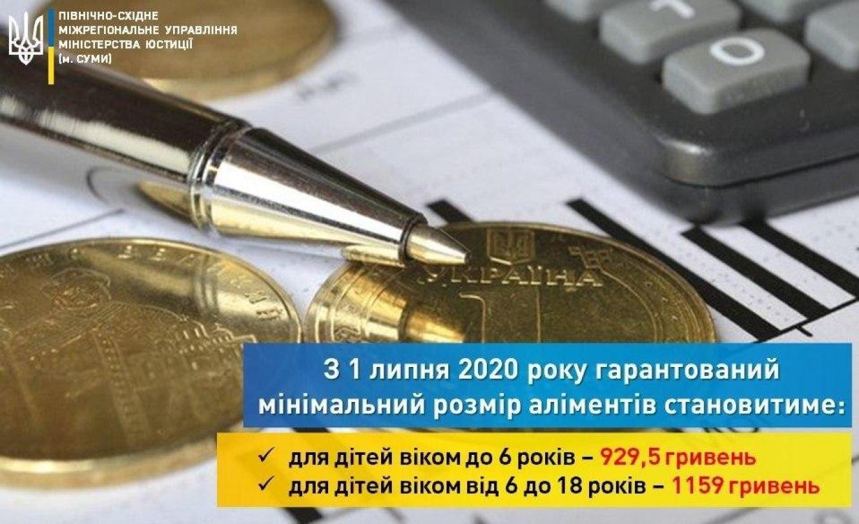 До відома сумчан: з 1 липня збільшується гарантований мінімальний розмір аліментів, фото-1