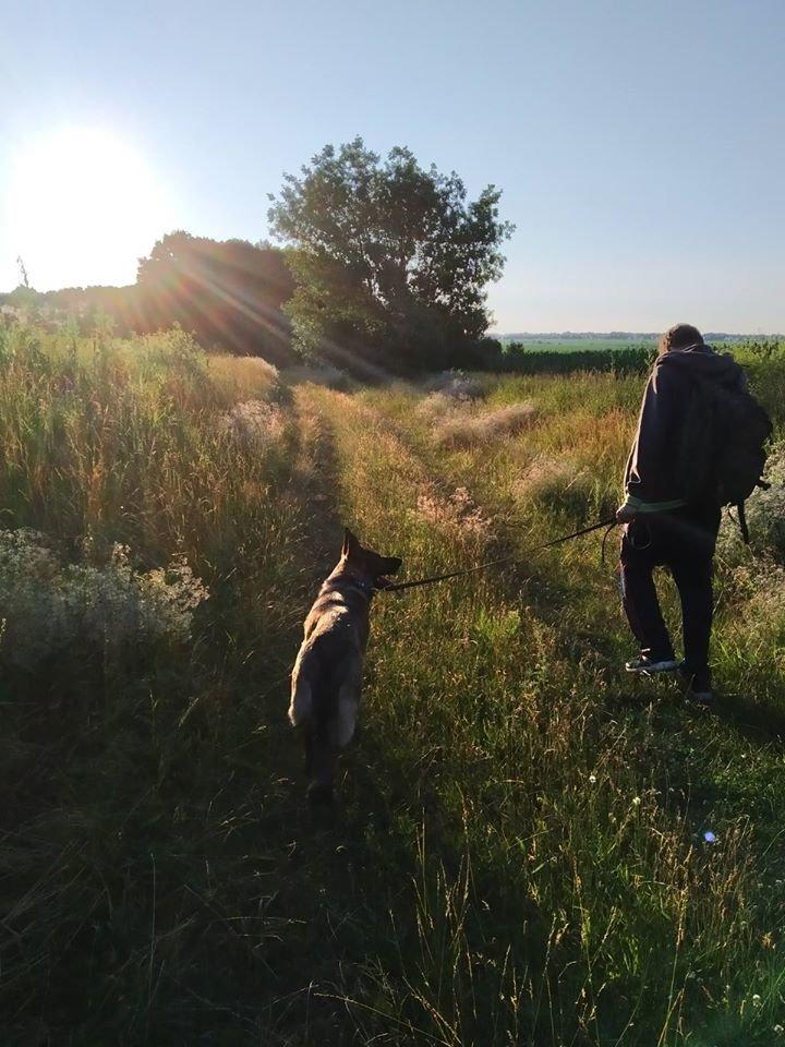 На Сумщині рятувальники шукають зниклу жінку з Чернігівщини, фото-4