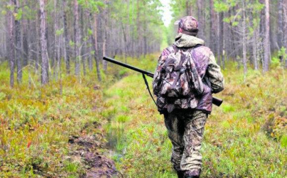 Мисливців Сумщини закликають дотримуватися правил особистої безпеки, фото-1