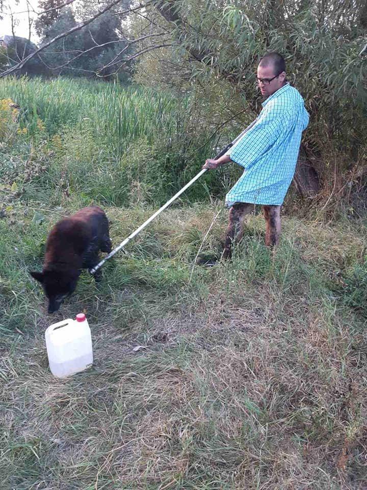 У Сумах двоє чоловіків витягли з болота собаку, фото-4
