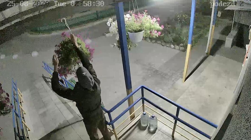 У Сумах камера відеоспостереження зафіксувала крадія квітів , фото-1
