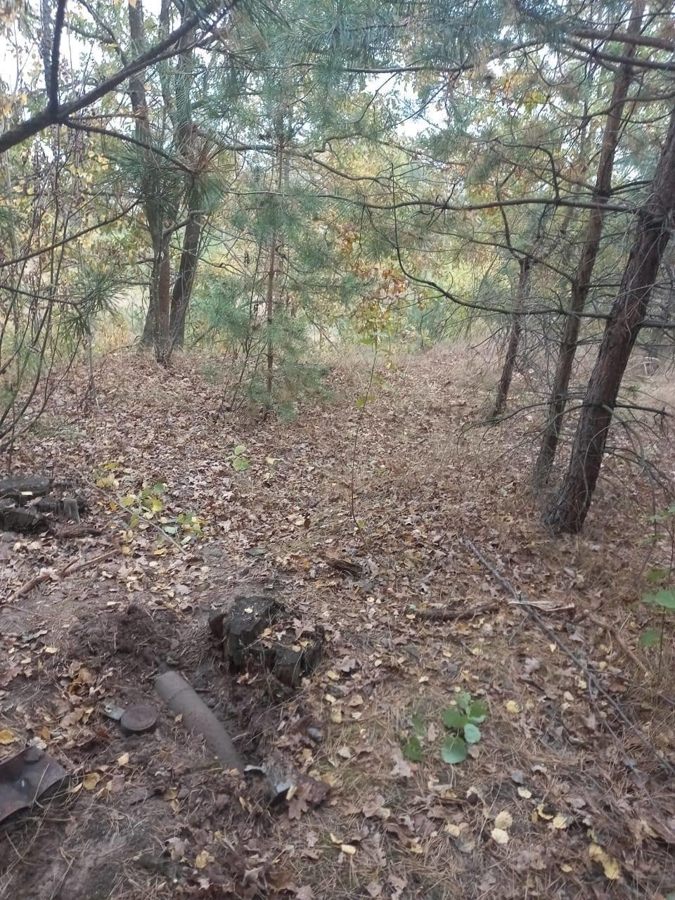 В лісових насадженнях на Сумщині громадяни знову знаходять старі боєприпаси, фото-1
