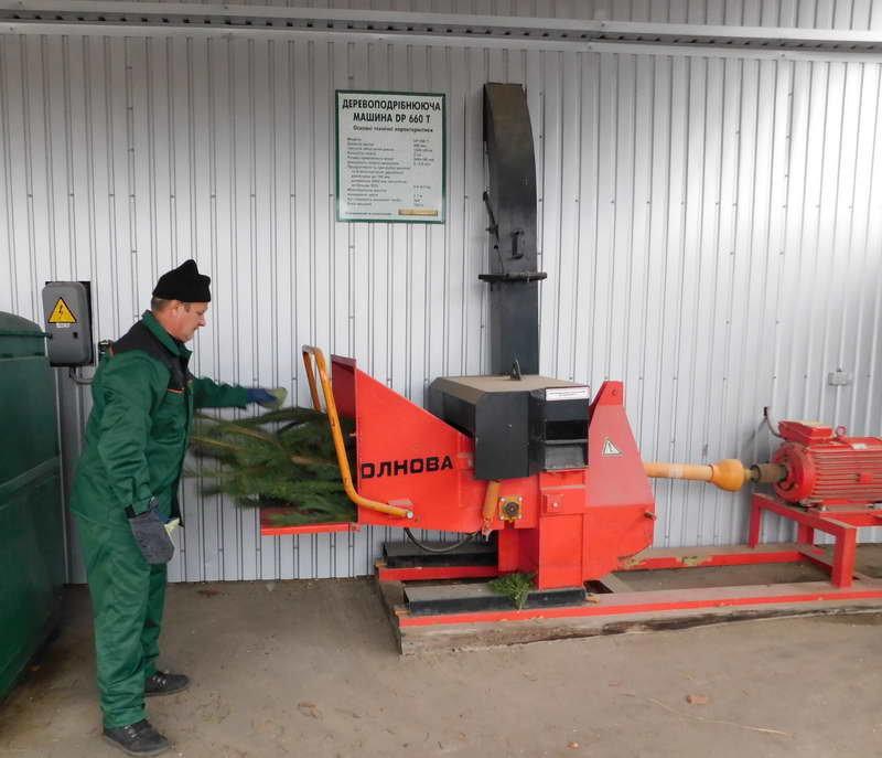 Сумчанам пропонують утилізувати використану новорічну ялинку, фото-1