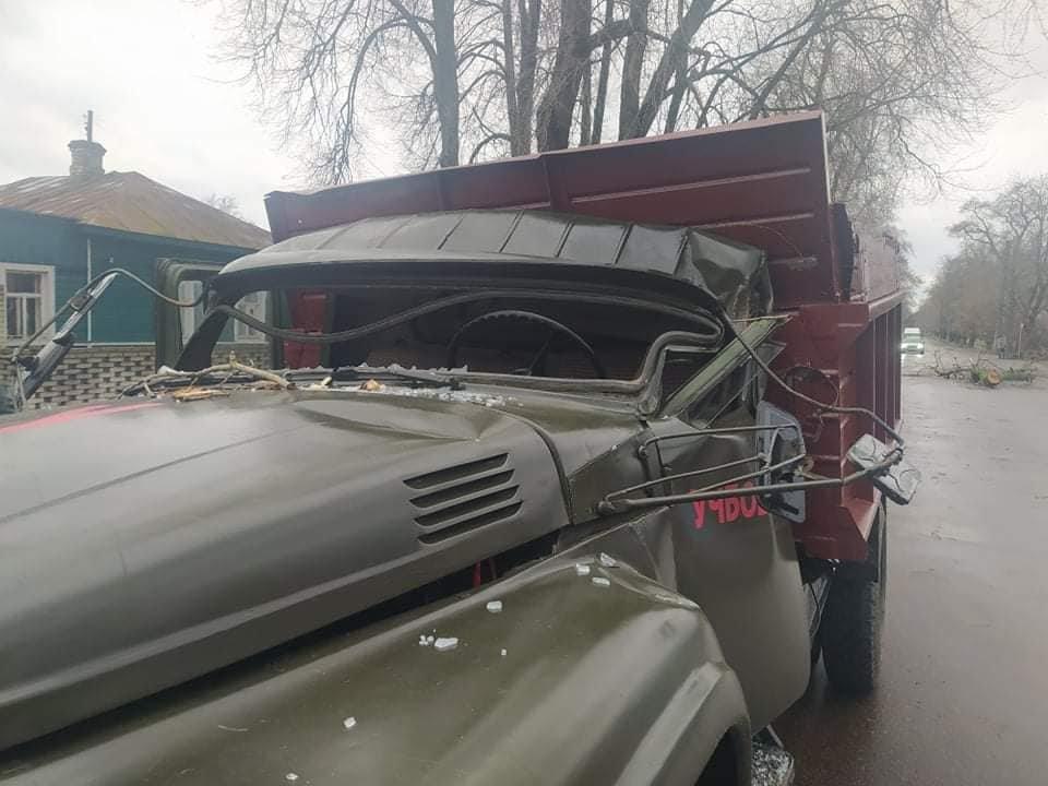 У Шостці на навчальну автівку впало дерево: є постраждалі , фото-2