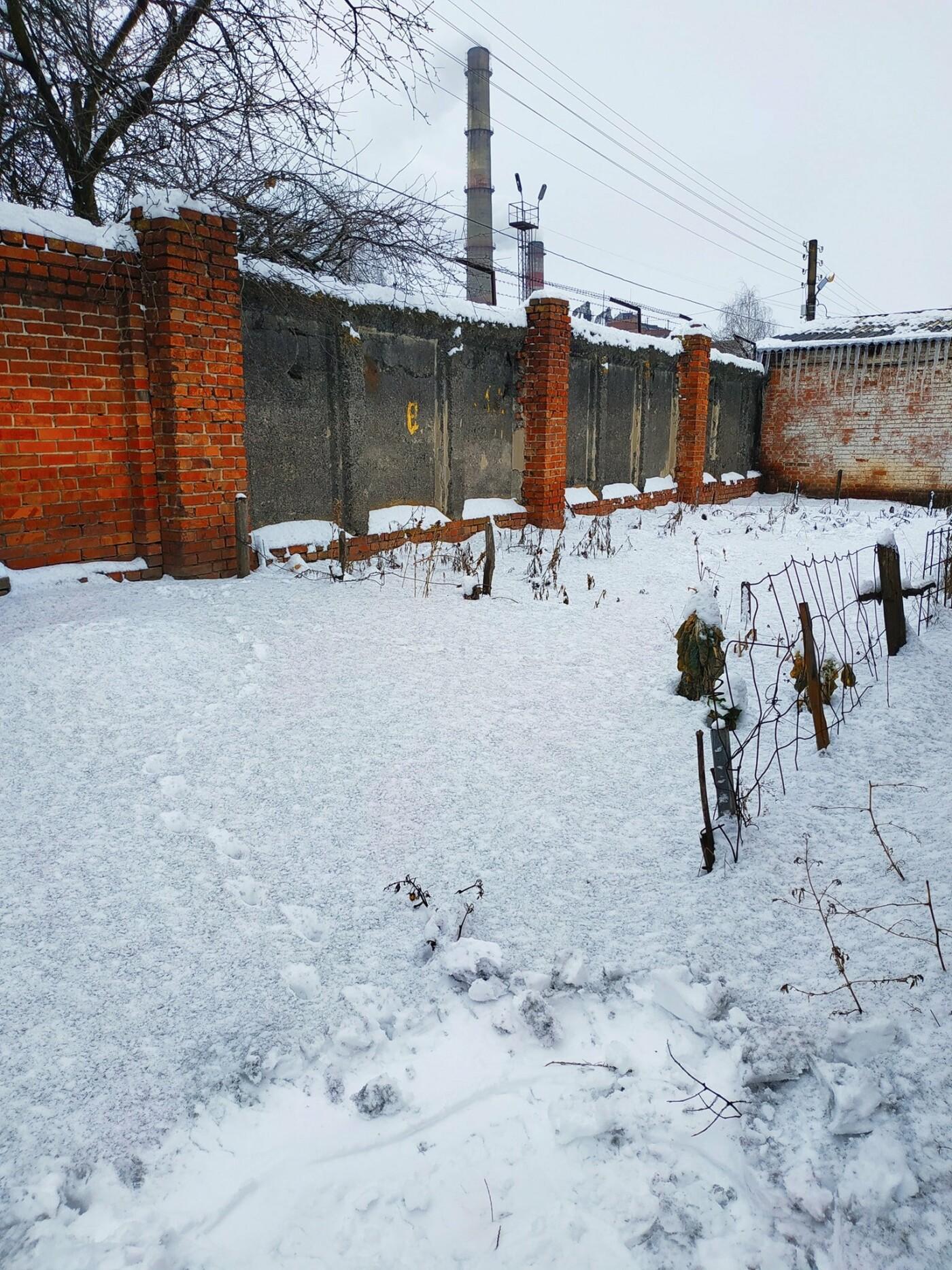 У Сумах біля ТЕЦ випав чорний сніг, фото-2