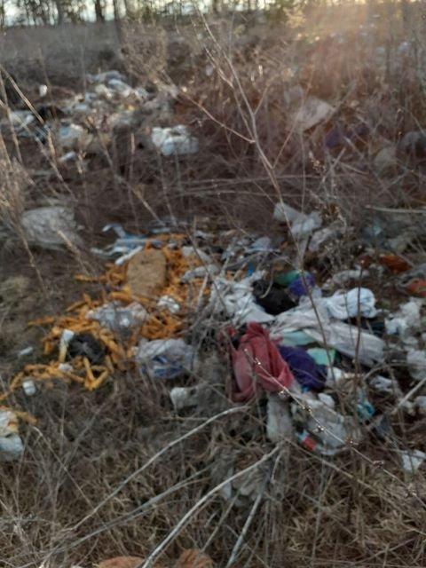 Село на Сумщині перетворили на сміттєзвалище, фото-4